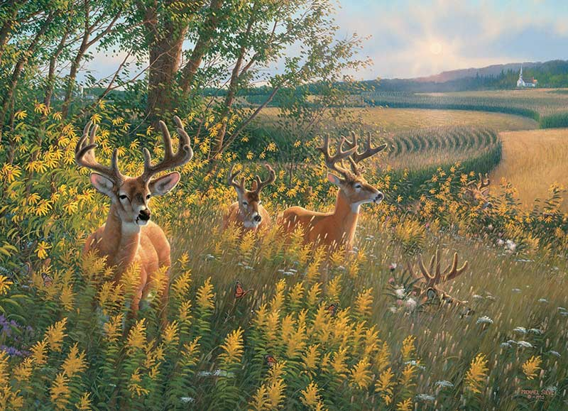 Summer Deer Countryside Jigsaw Puzzle
