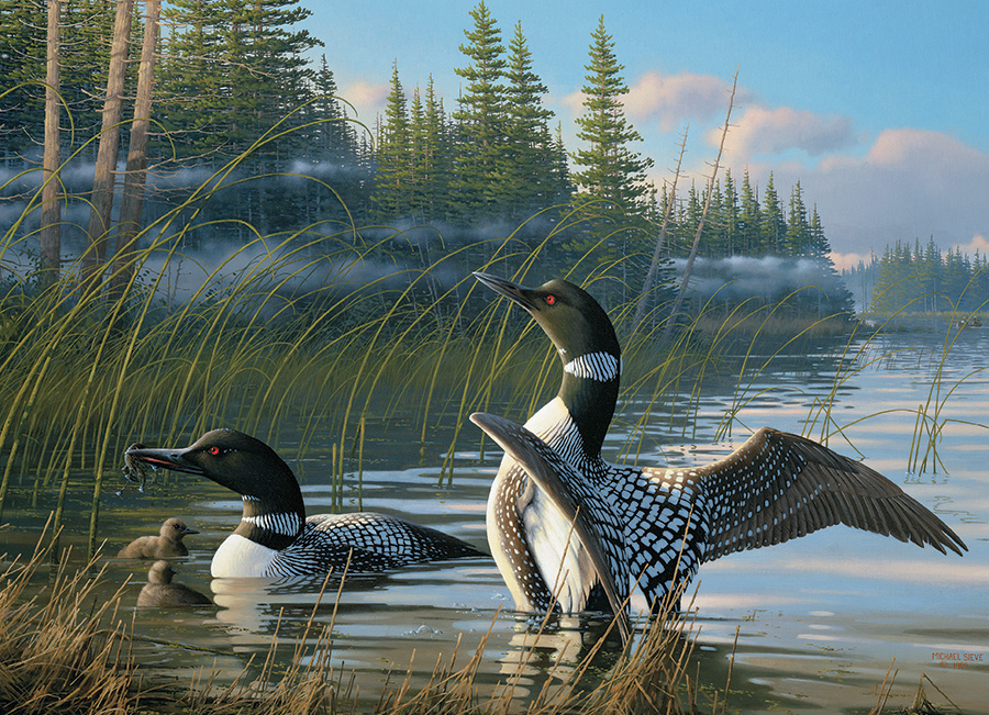 Common Loons Birds Jigsaw Puzzle