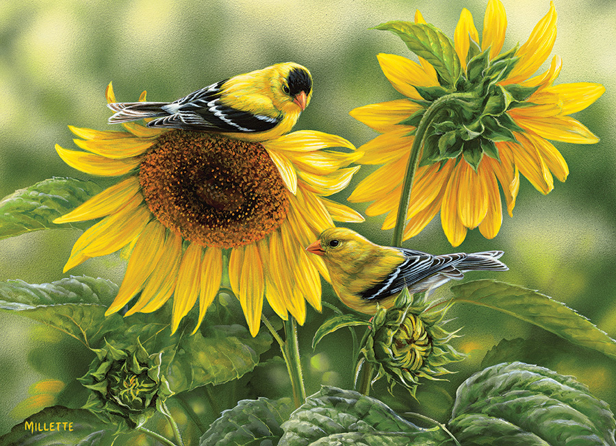 Sunflowers and Goldfinches Birds Jigsaw Puzzle