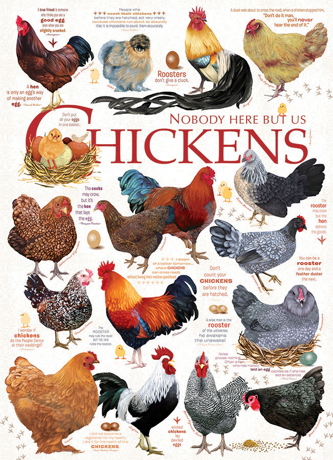 Chicken Quotes Chickens & Roosters Jigsaw Puzzle