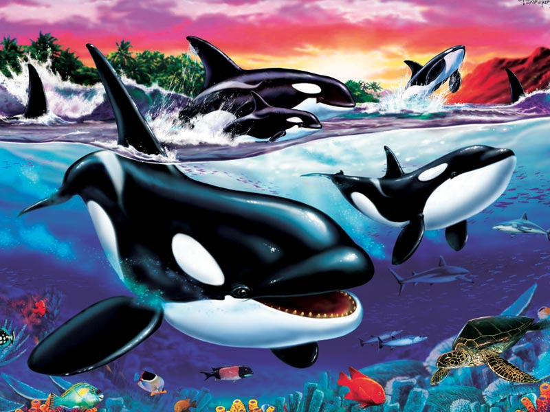 Killer Whales Under The Sea Jigsaw Puzzle