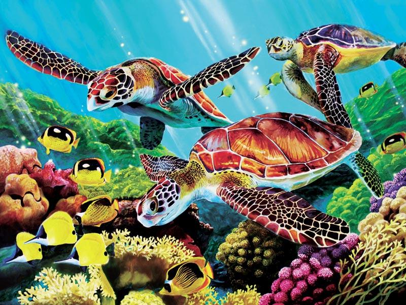 Molokini Turtles Marine Life Jigsaw Puzzle