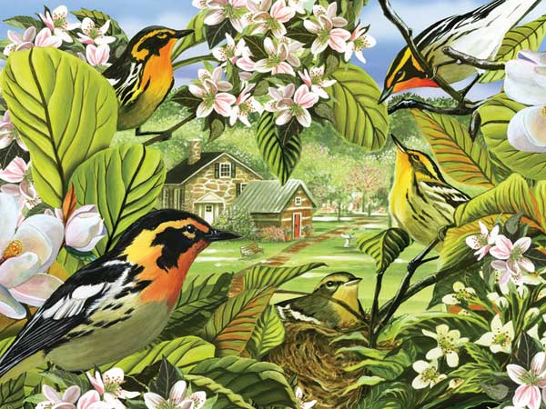 Blackburnian Warblers Birds Jigsaw Puzzle