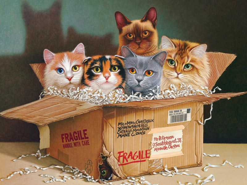 Six Pack Cats Jigsaw Puzzle