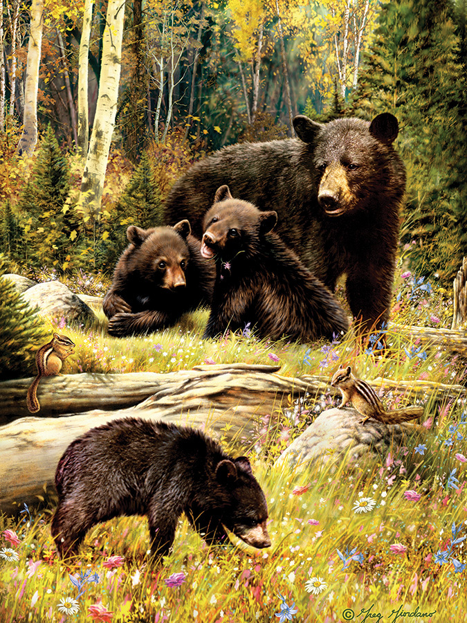 Bears Wildlife Jigsaw Puzzle