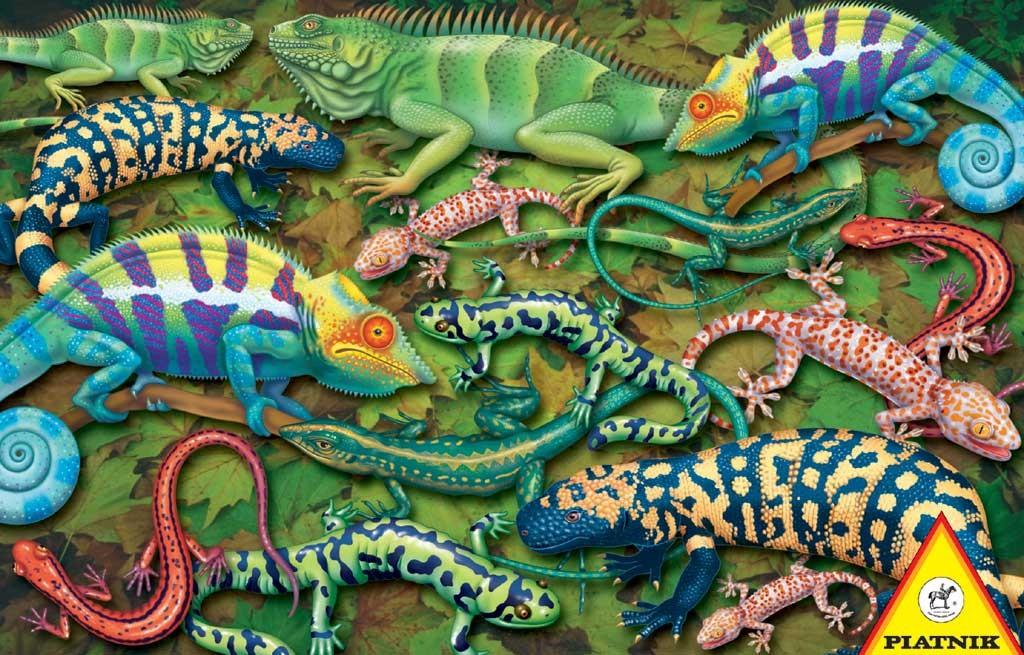 Salamanders Reptiles / Amphibians Jigsaw Puzzle