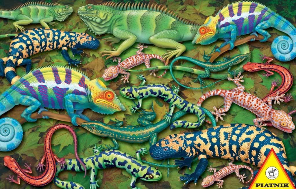Salamanders Reptiles and Amphibians Jigsaw Puzzle