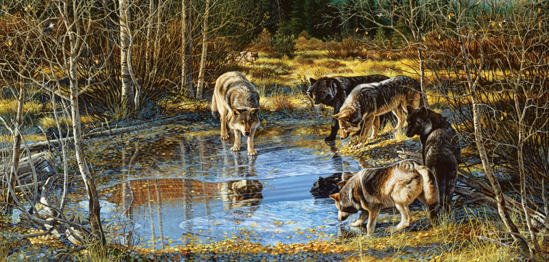 Treading on Thin Ice Wolves Jigsaw Puzzle