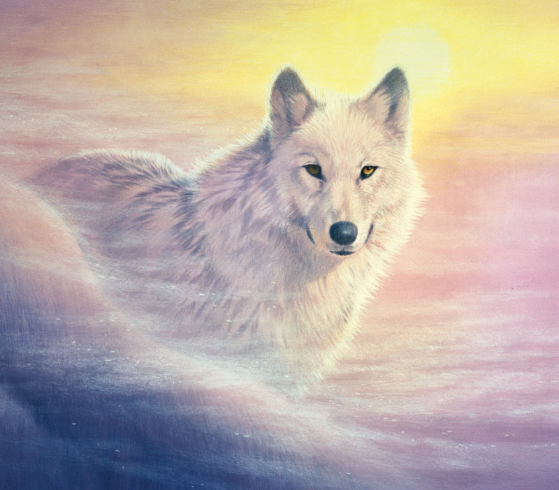 Evening Mist Wolves Jigsaw Puzzle