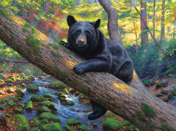 Lazy boy Bears Jigsaw Puzzle