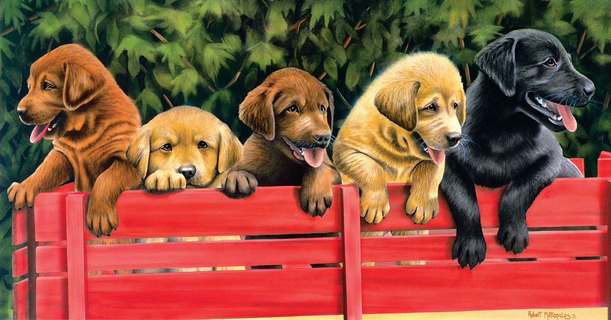 All Aboard - Scratch and Dent Dogs Jigsaw Puzzle
