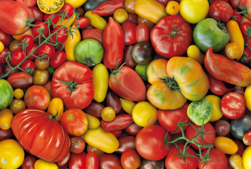 Tomatoes Food and Drink Jigsaw Puzzle