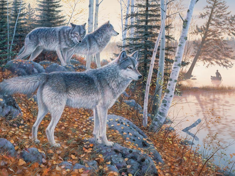 Silent Travelers Wolves Jigsaw Puzzle