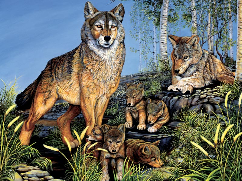 Proud Parents Wolves Children's Puzzles