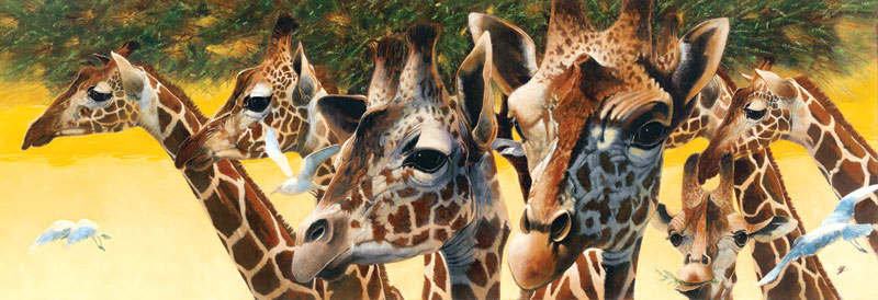 A Walk in the Sun Other Animals Jigsaw Puzzle