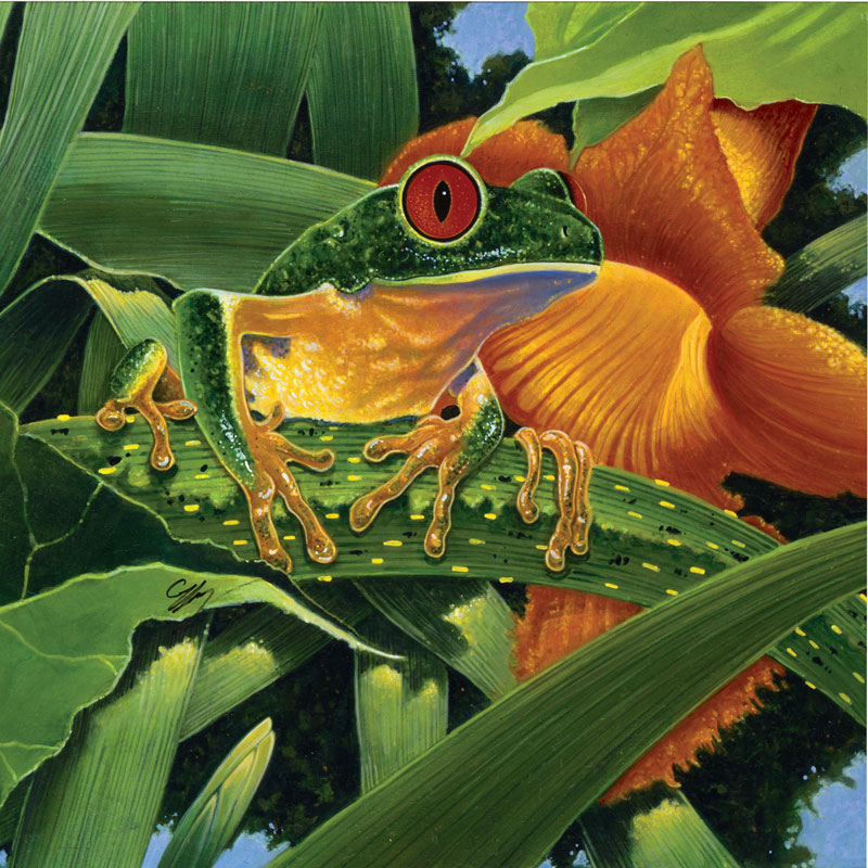 Aggie Reptiles and Amphibians Jigsaw Puzzle