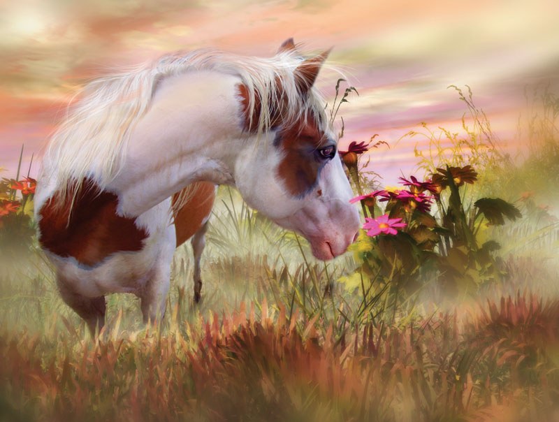 Summer Blooms Horses Jigsaw Puzzle