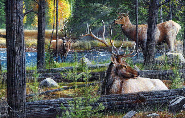 In the Forest Wildlife Jigsaw Puzzle