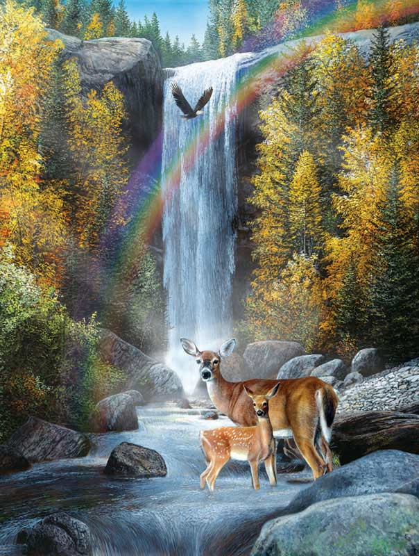 Rainbow Setting Outdoors Jigsaw Puzzle