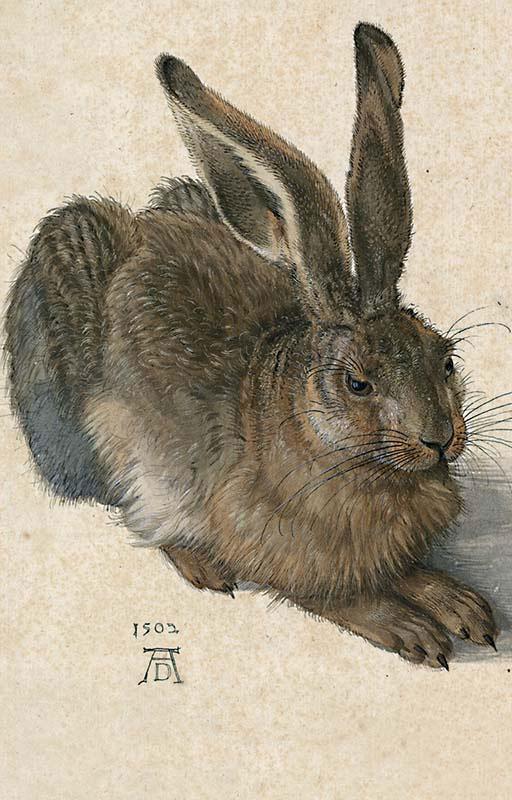 Durer Hare Renaissance Jigsaw Puzzle
