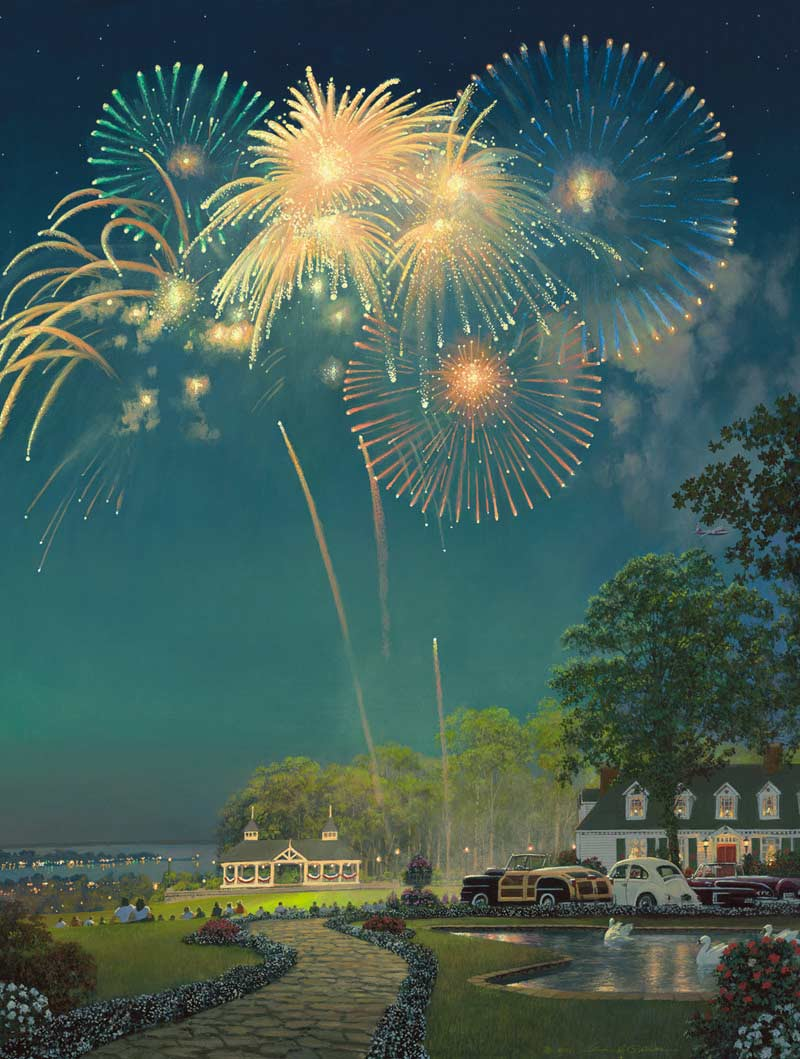 Best Seat in the House Fireworks Jigsaw Puzzle