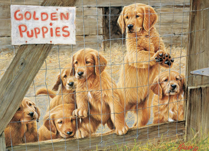 Golden Puppies Dogs Jigsaw Puzzle