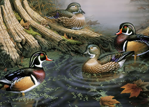 Wood Ducks Birds Jigsaw Puzzle