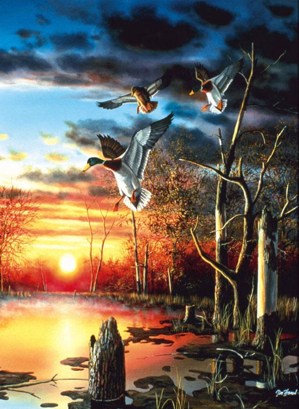 Evening Splendor Wildlife Jigsaw Puzzle
