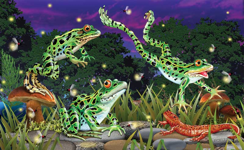 Leap Frogs Reptiles and Amphibians Jigsaw Puzzle