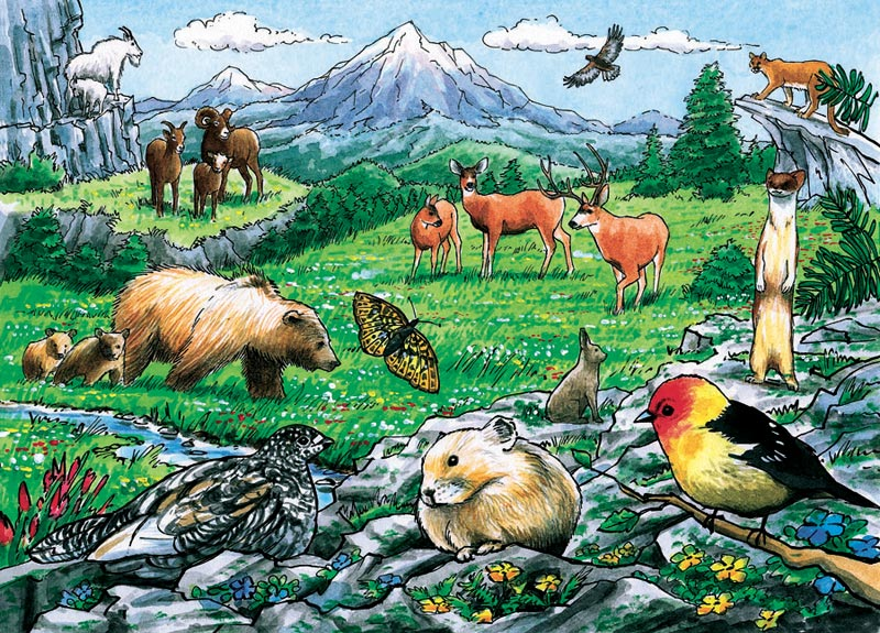 Rocky Mountain Wildlife, (tray) Wildlife Tray Puzzle