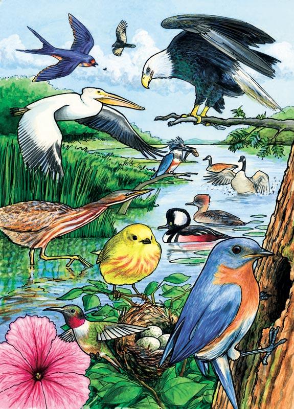 North American Birds, (tray) Birds Tray Puzzle