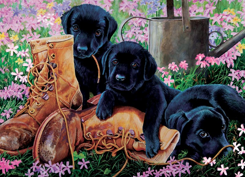 Black Lab Puppies Dogs Jigsaw Puzzle