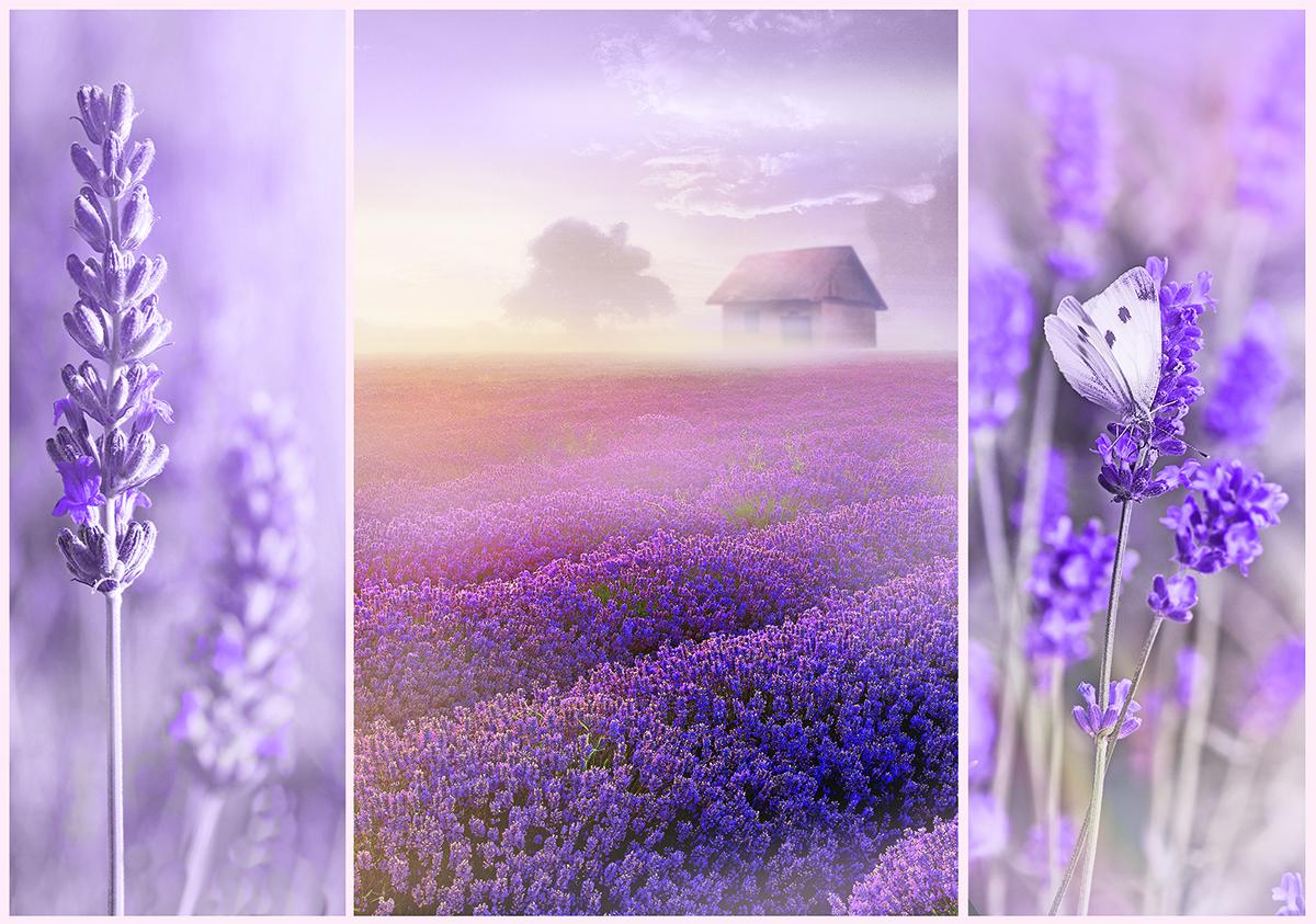 Romantic Lavender Fields Flowers Jigsaw Puzzle