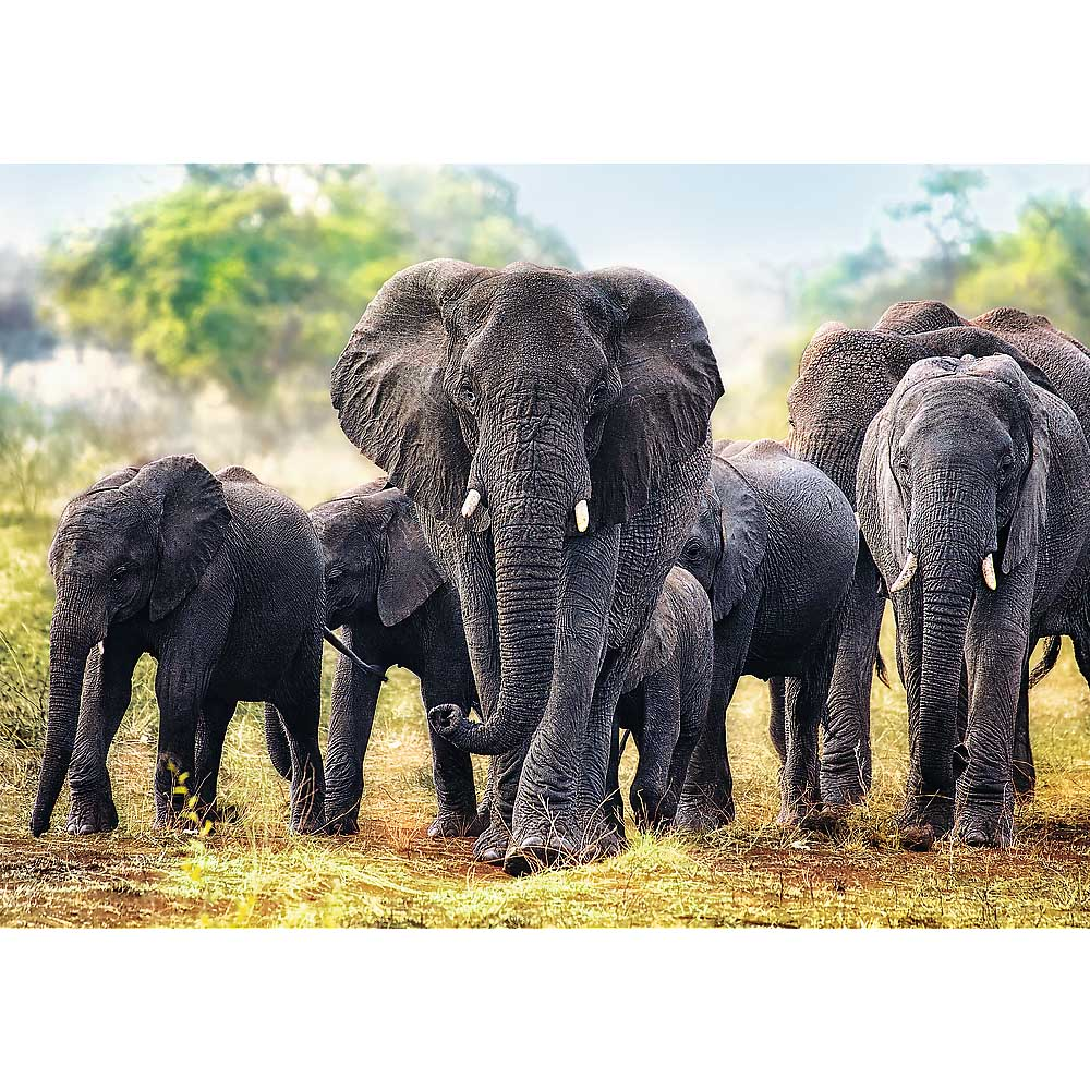 African Elephants Photography Jigsaw Puzzle