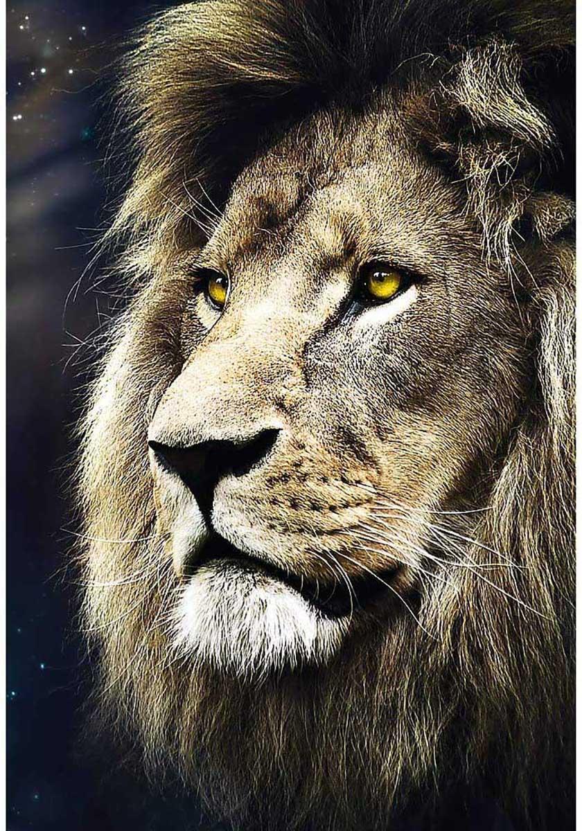 Lion's Portrait Lions Jigsaw Puzzle