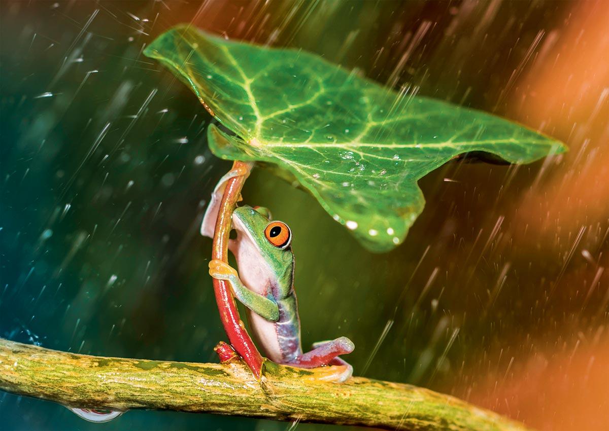 Green Umbrella / Parapluie vert Animals Jigsaw Puzzle