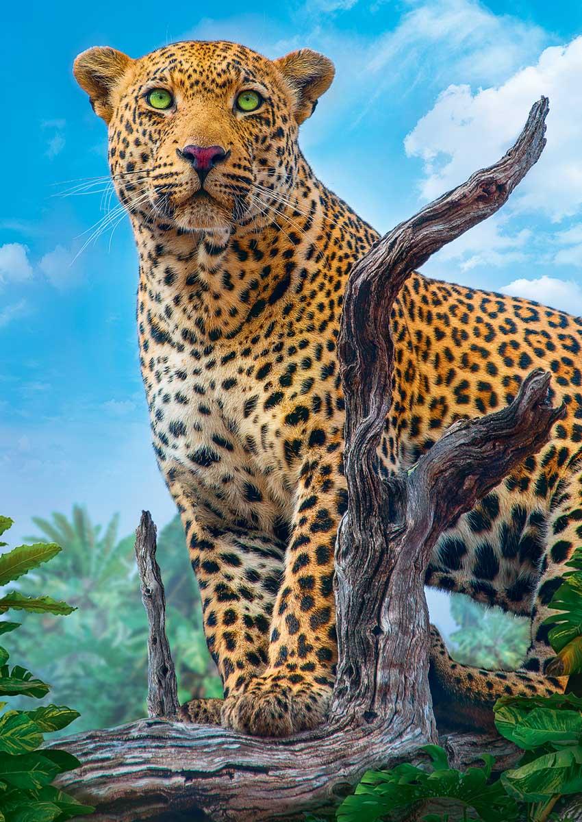 Wild Leopard Animals Jigsaw Puzzle