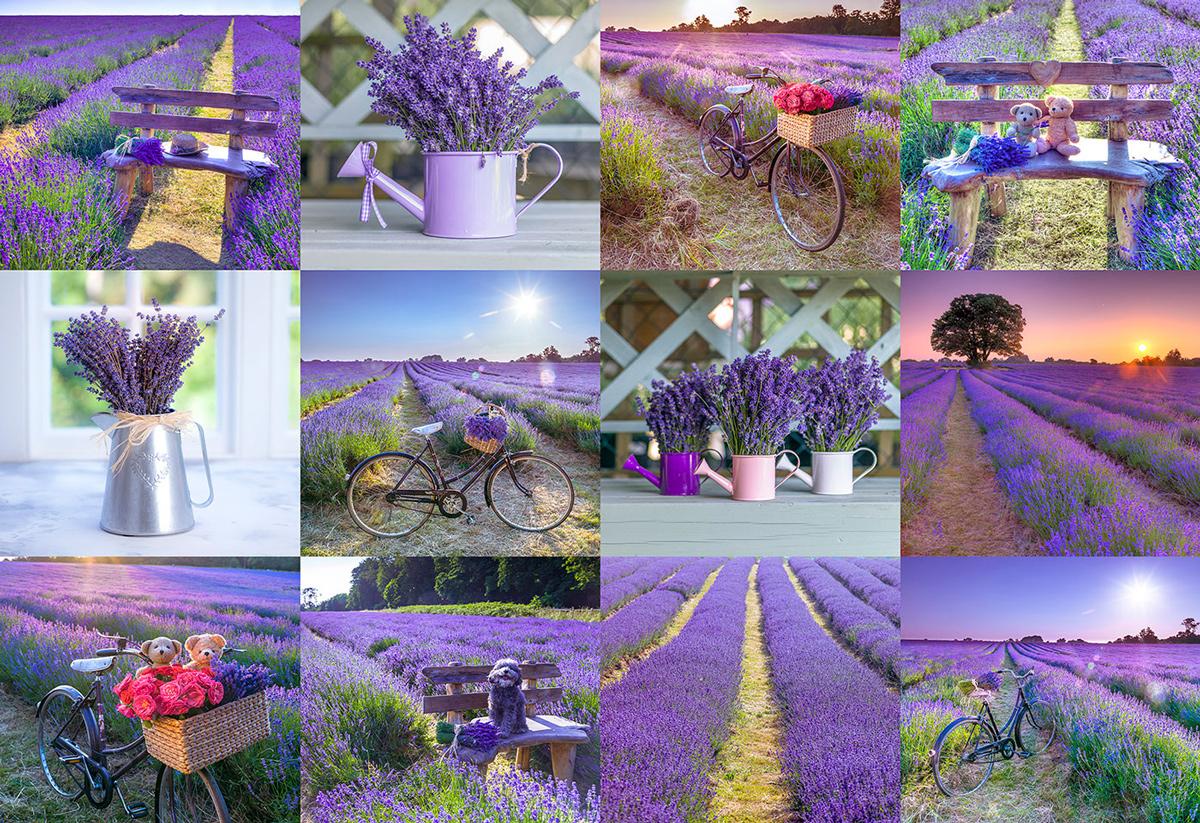 Lavender France L France Wooden Jigsaw Puzzle