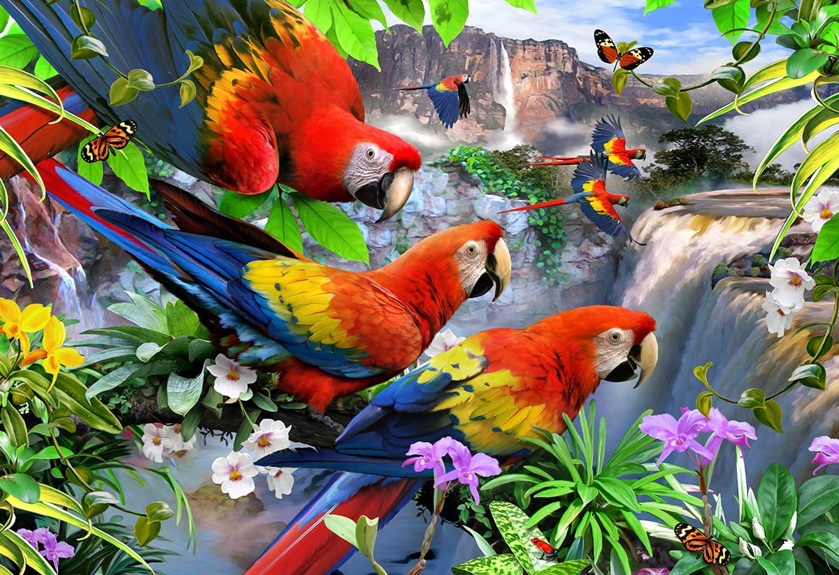 Parrot Island S Birds Wooden Jigsaw Puzzle
