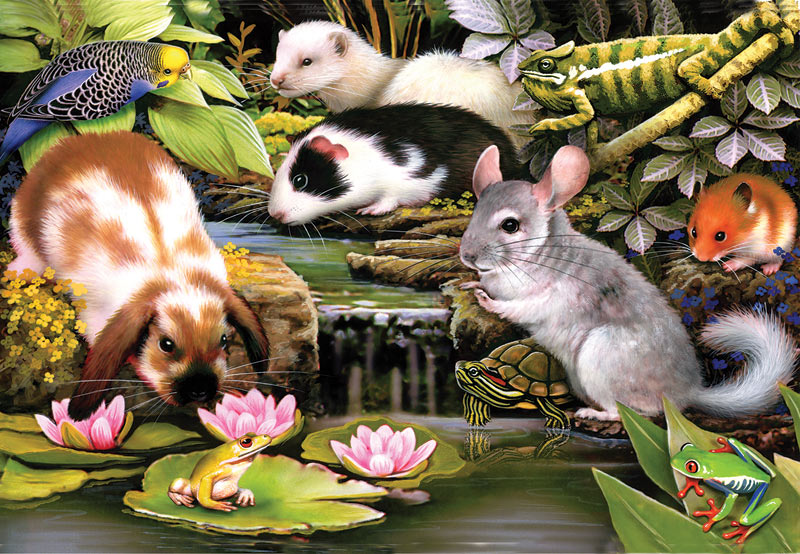 Poolside Pets Animals Jigsaw Puzzle