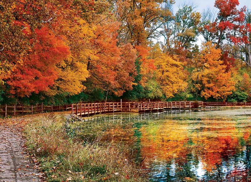 Sharon Woods, OH Fall Jigsaw Puzzle