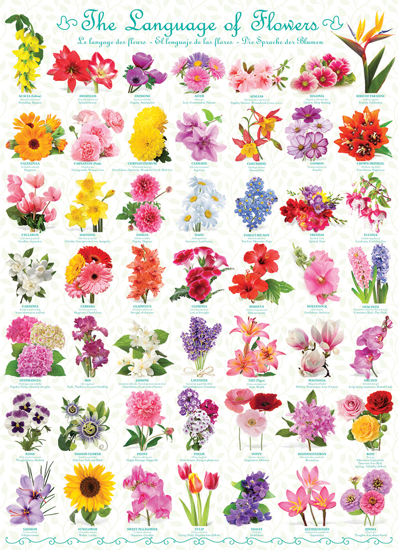 The Language of Flowers Flowers Jigsaw Puzzle