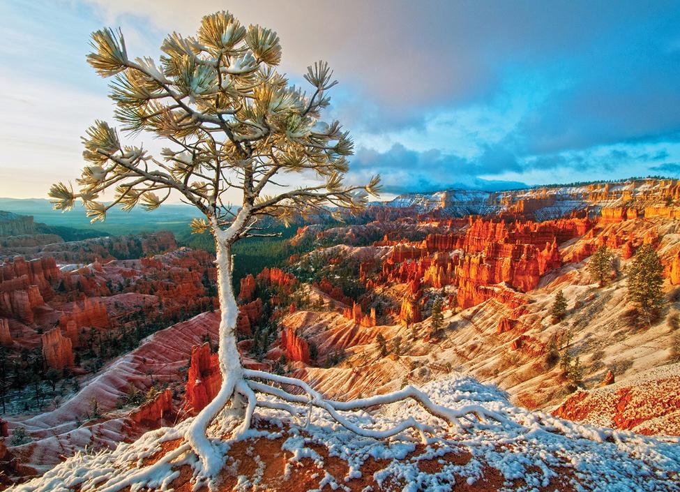 Winter Sunrise Mountains Jigsaw Puzzle