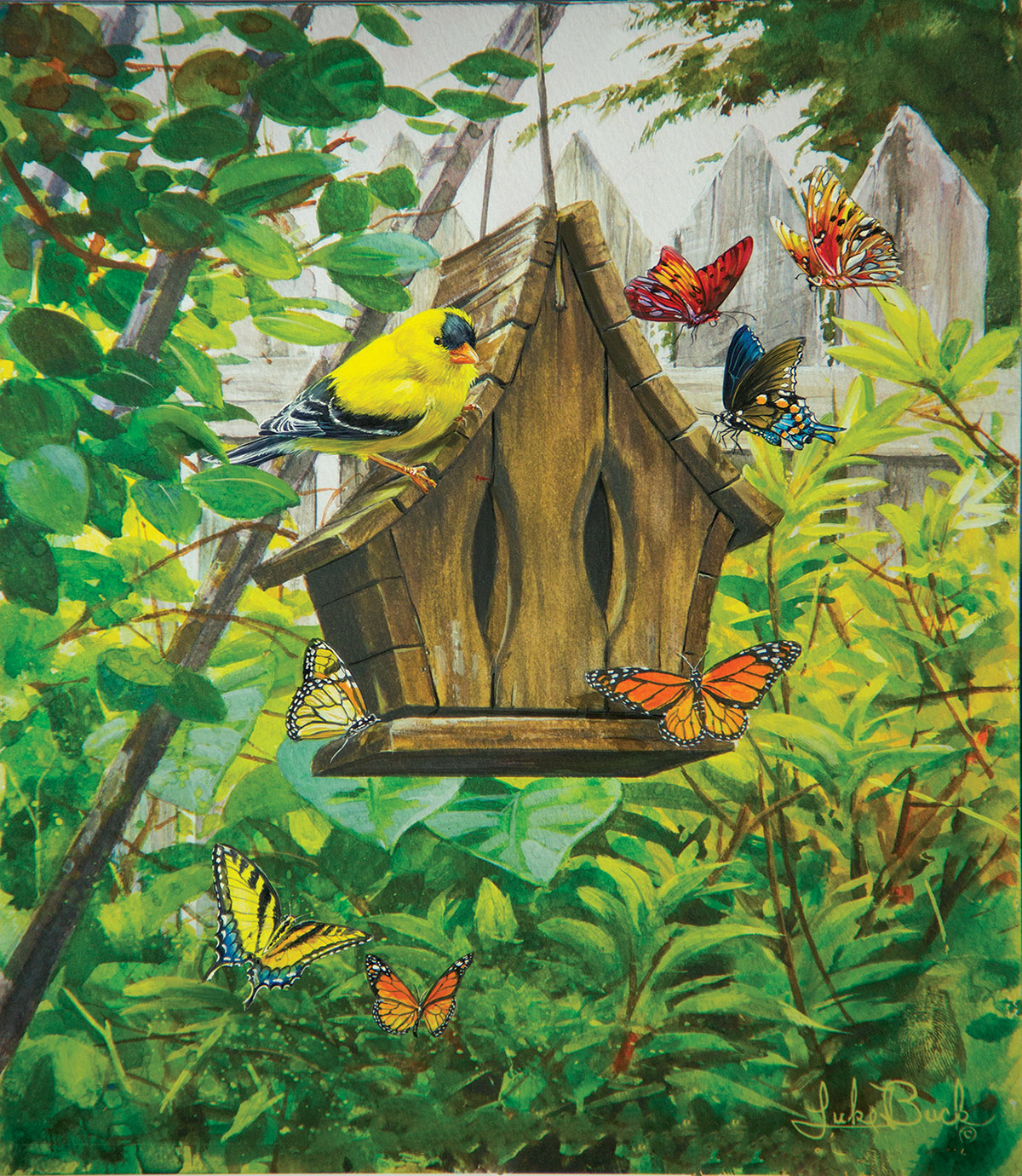 The Butterfly House Birds Jigsaw Puzzle