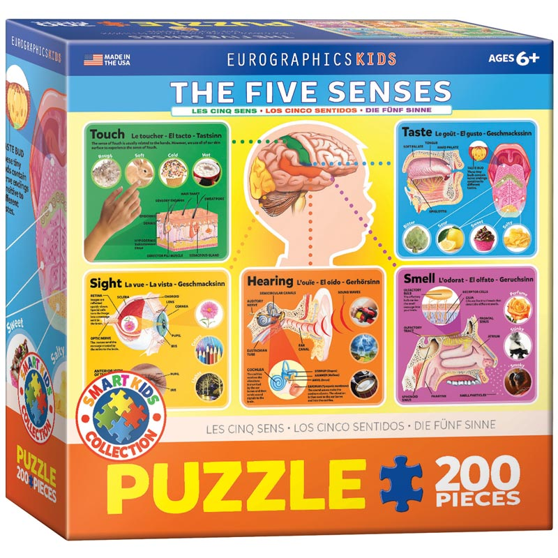 The Five Senses Educational Jigsaw Puzzle