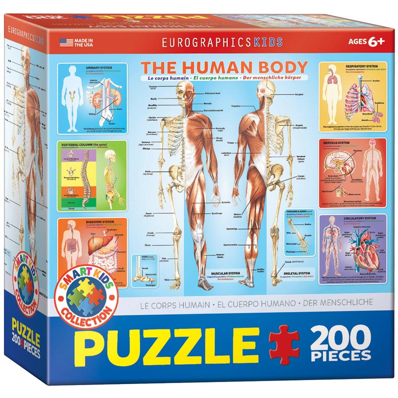 The Human Body Educational Jigsaw Puzzle