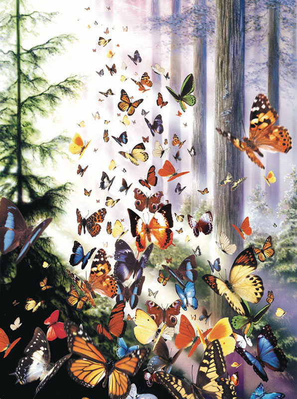 MINI - Butterfly Woods Butterflies and Insects Jigsaw Puzzle