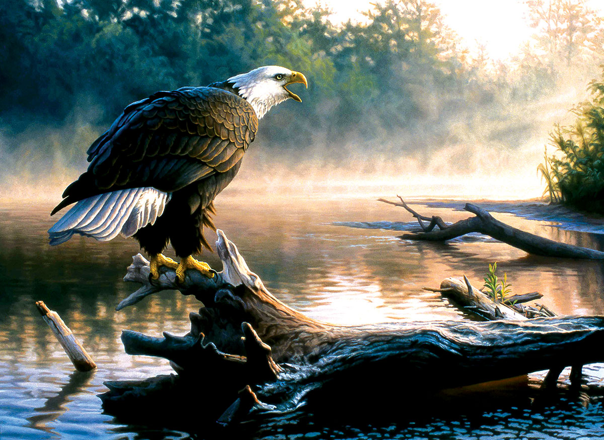 Scouting the River Eagles Jigsaw Puzzle