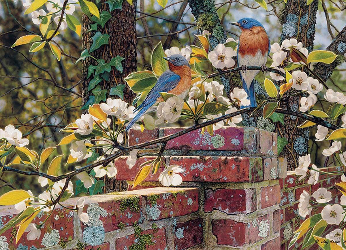 Backyard Blues Birds Jigsaw Puzzle