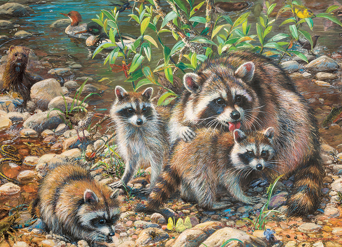 Raccoon Family Animals Jigsaw Puzzle